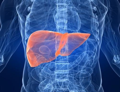 Descripción del protocolo de exploración del hígado