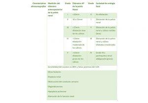 Ultrasonografía en hidronefrosis